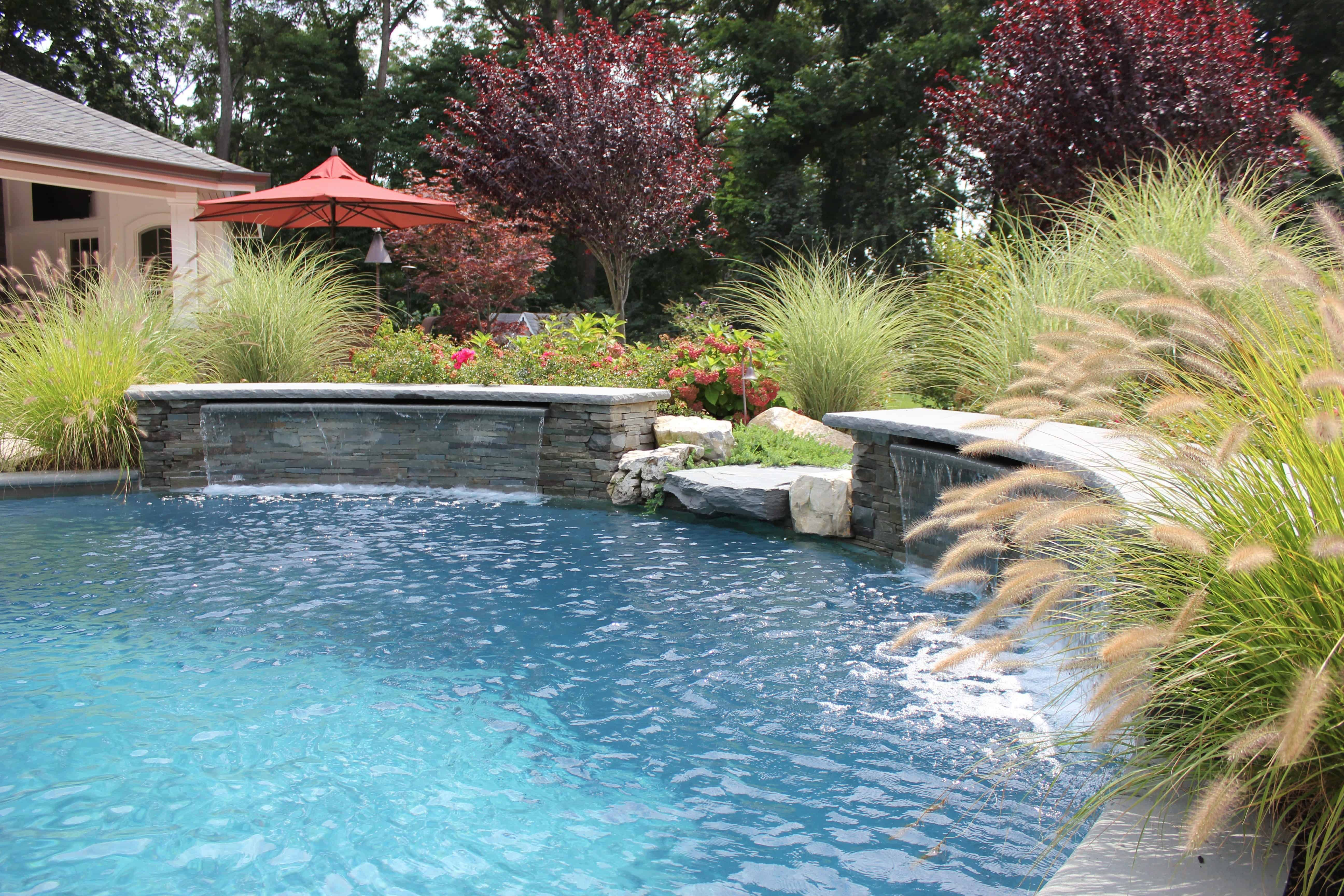 Landscape Plantings - Thundercloud Plum Tree,  Maiden Grass, Fountain Grass, and mixed perennials - Old Westbury, Long Island NY