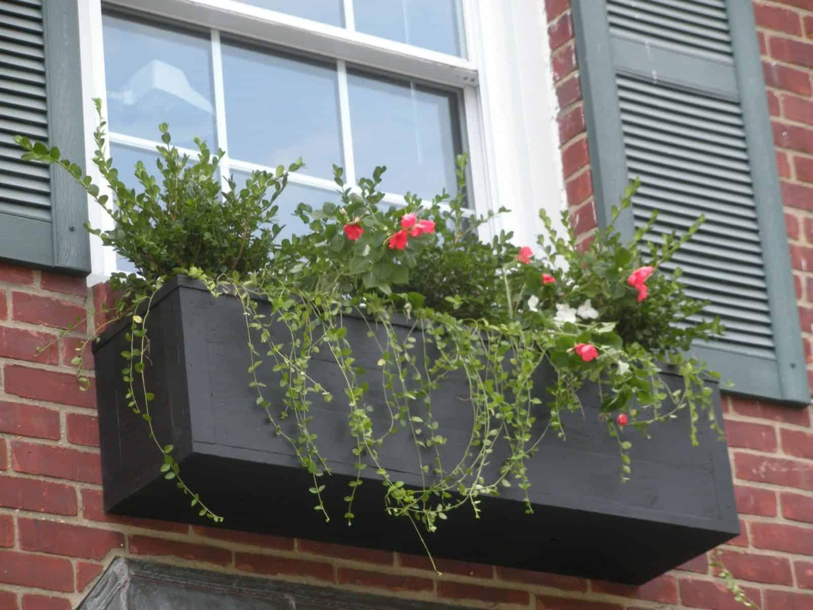 1' x 3' Cedar Planter Box planted with Ilex, Impatients, and Vinca Minor - Rockville Center, Long Island NY