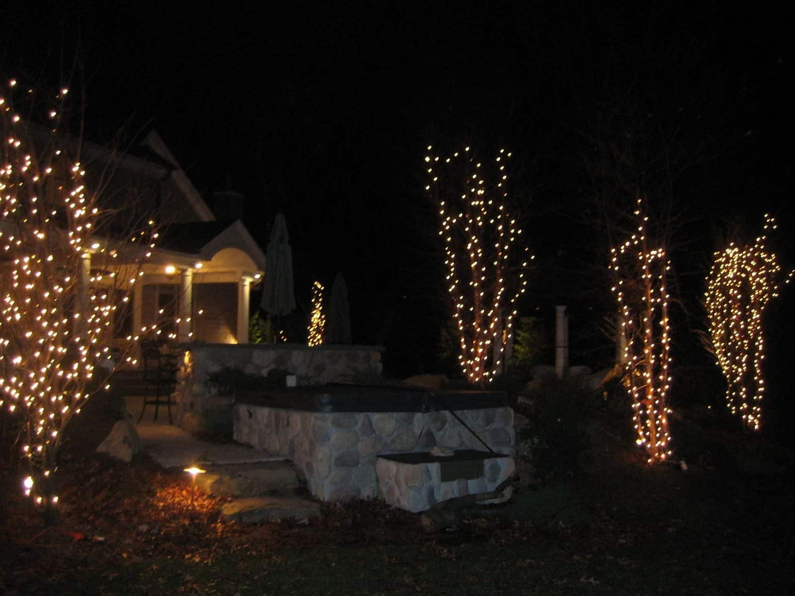 Outdoor Tree Lights in the Hamptons, NY