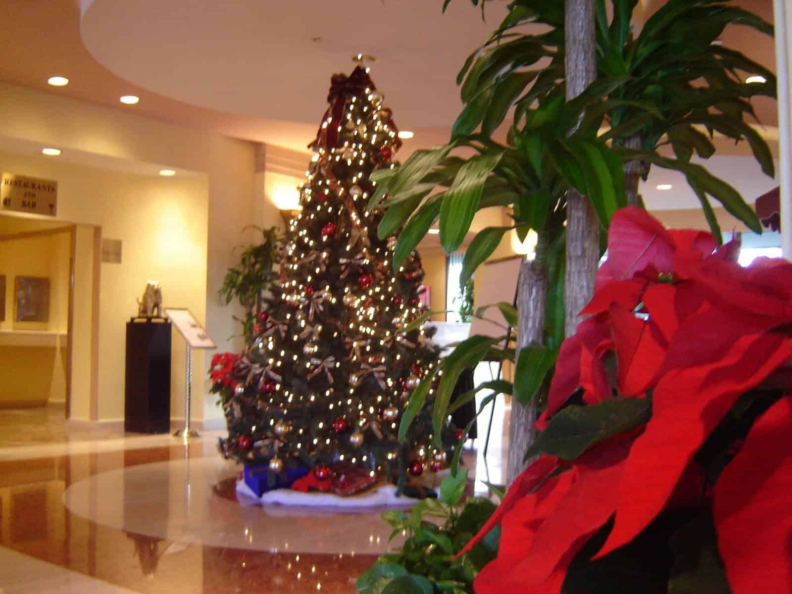 Hotel Tree Decorations in Westhampton, Long Island NY