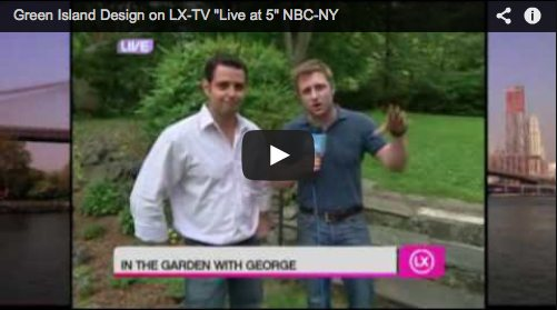 "Green Island Design on LX-TV ""Live at 5″ NBC-NY"