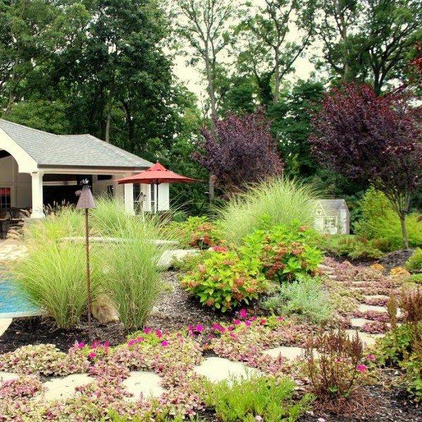 Perennial Planting Scheme