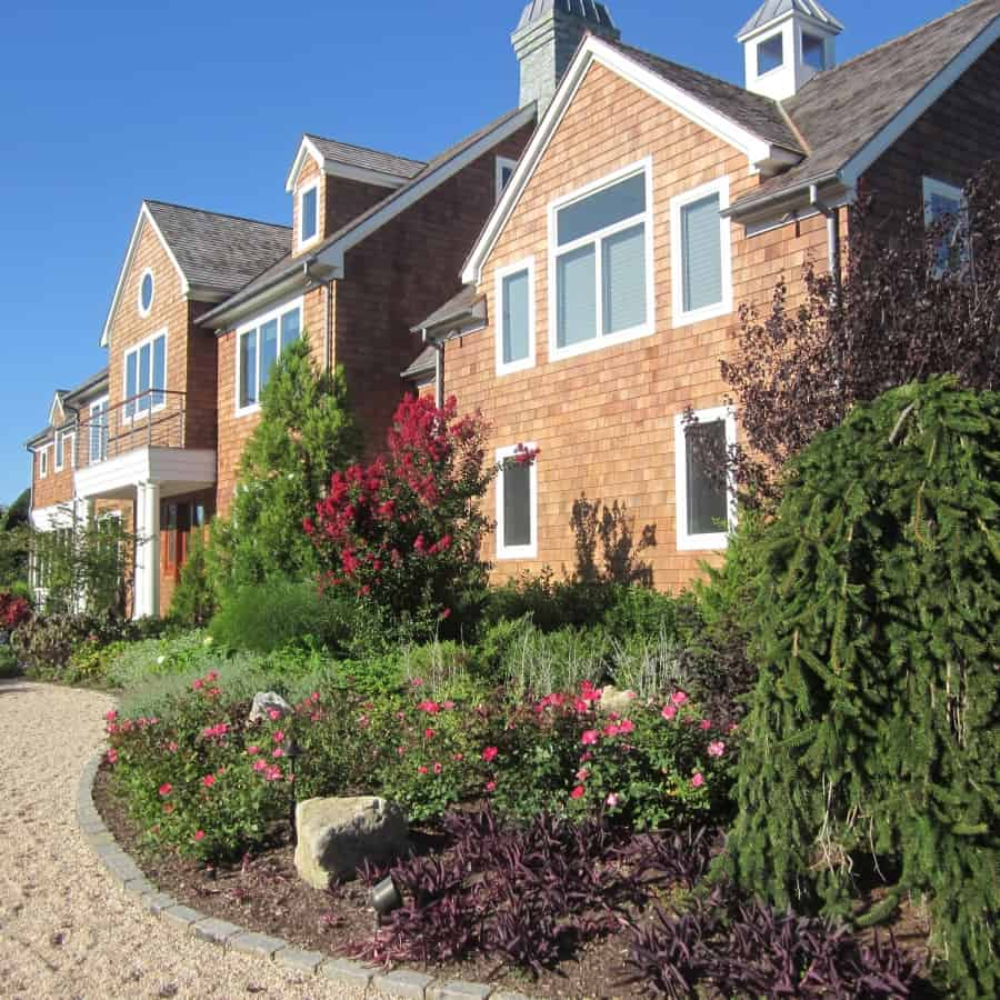 Landscape Plantings - Foreground - Mixed Perennials - Background - Crape Mrytle and Deodara Cedar - Southampton, Long Island NY
