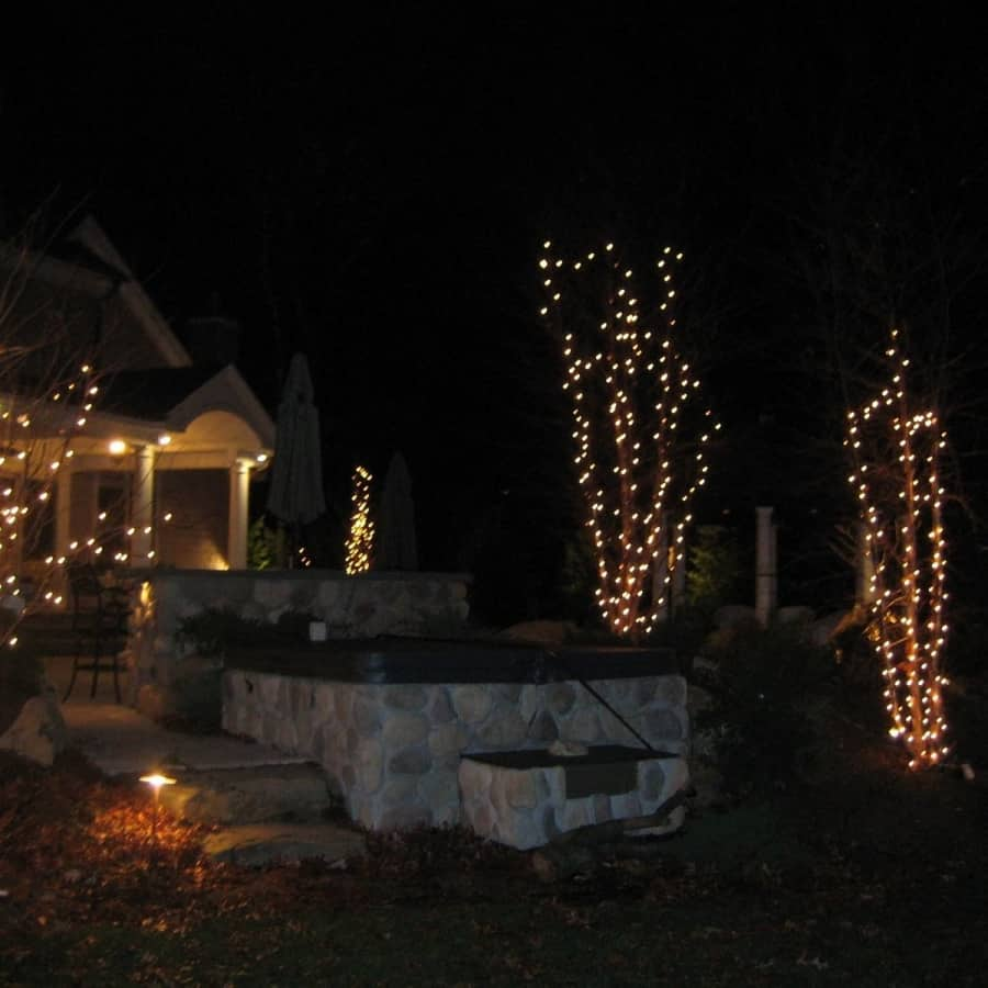 Outdoor Tree Lights in the Hamptons, NY