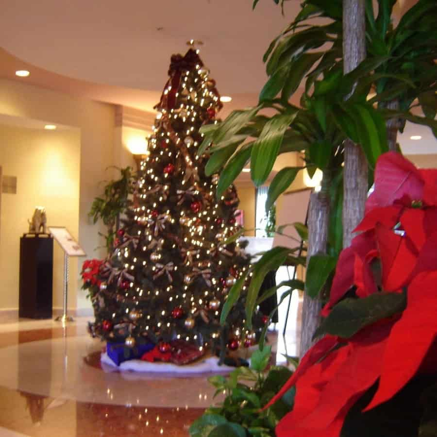 Hotel Tree Decorations in Westhampton, Long Island NY