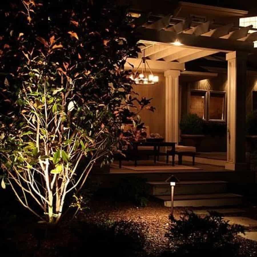 Landscape Plantings - Magnolia Brackens Brown Beauty - Melville, Long Island NY