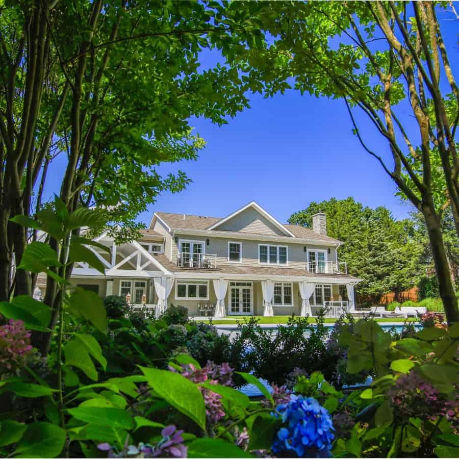 Landscape Plantings - Crape Myrtle, Ilex Compacta, Hydrangea Endless Summer - Sag Harbor, Long Island NY